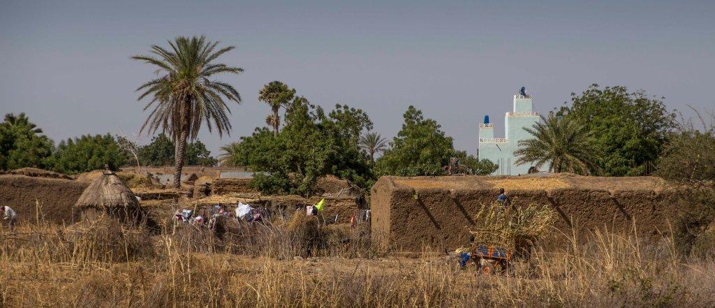 Malian mud village