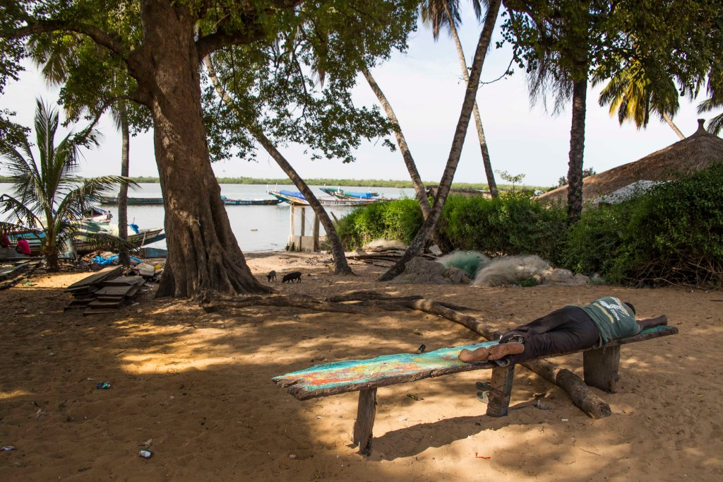 Sleepy day at the Casamance