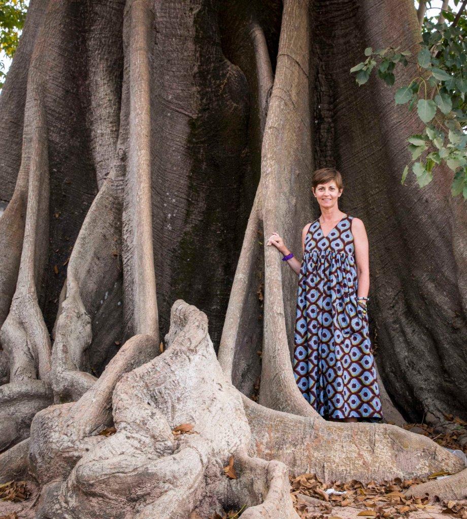 Fabulous tree in Oussouye